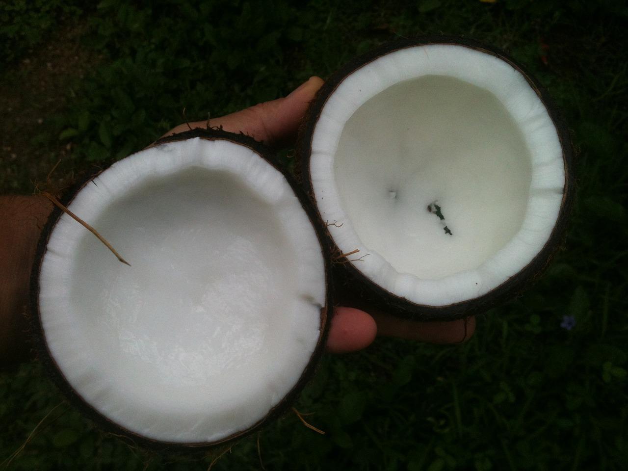 Jakie właściwości ma olej kokosowy?